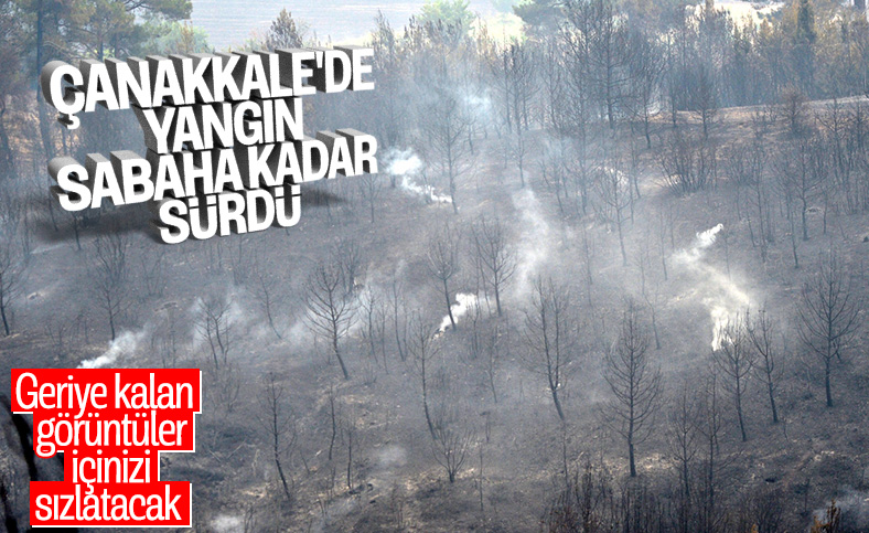 Çanakkale'deki orman yangınında son durum