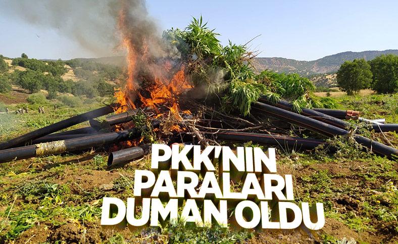 Diyarbakır'da terör örgütüne ağır darbe: 1 ton esrar