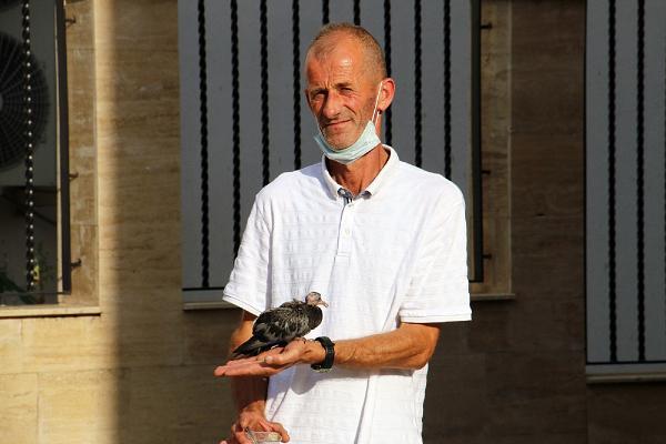 Düzce'de, aç kalan yavru güvercini ağzıyla besledi #3
