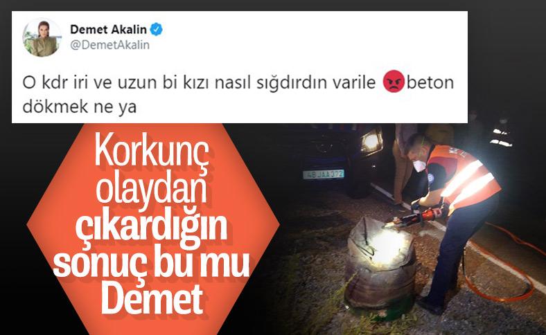 Demet Akalın'ın Pınar Gültekin tweet'i