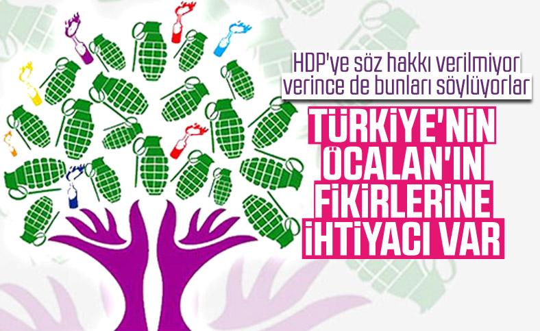 HDP'li vekile göre Türkiye'nin Öcalan'a ihtiyacı var