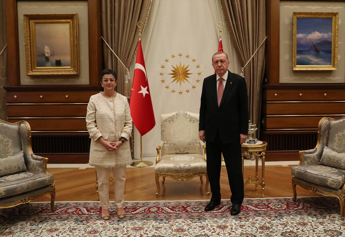 Türkiye sadece ortak değil #3