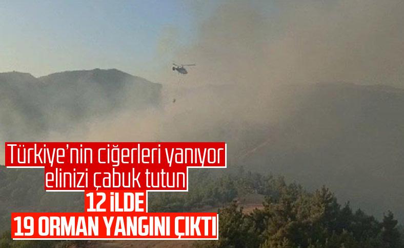 Bakan Pakdemirli: 19 yangından 15'i kontrol altına alındı