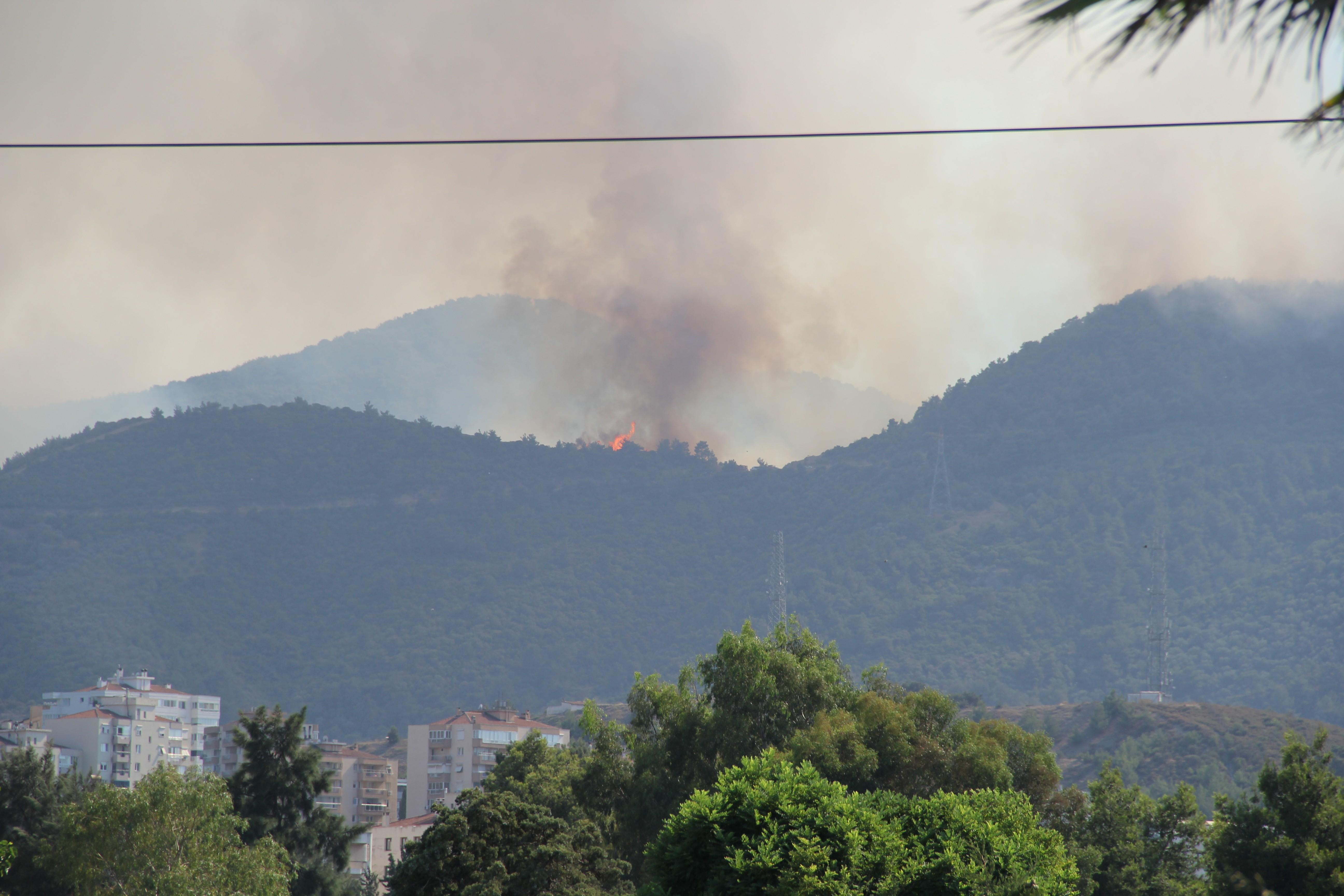 Bakan Pakdemirli: 19 yangından 15'i kontrol altına alındı #3