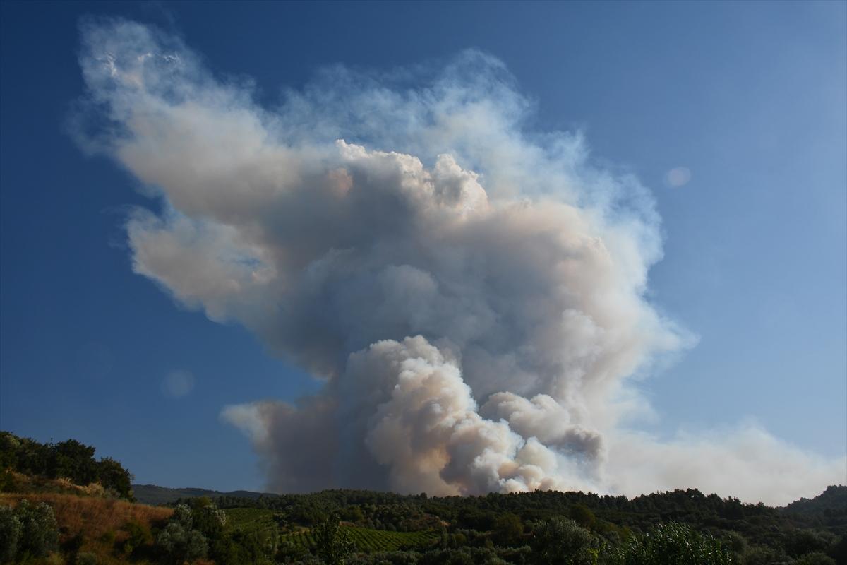 Bir orman yangını Manisa yerleşim yerlerine ulaştı # 14