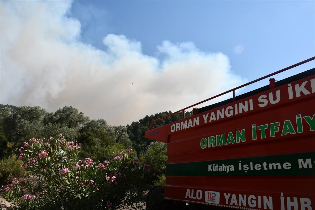 Bir orman yangını Manisa yerleşim yerlerine ulaştı # 16
