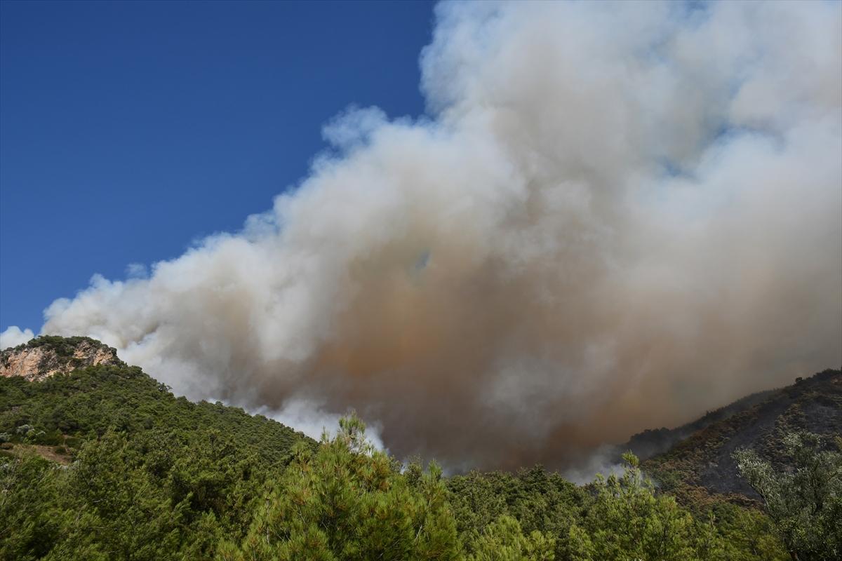 Bir orman yangını Manisa yerleşim yerlerine ulaştı # 17