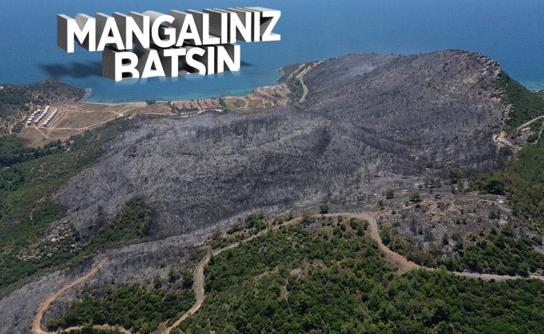 İzmir'deki orman yangınından geriye kalan