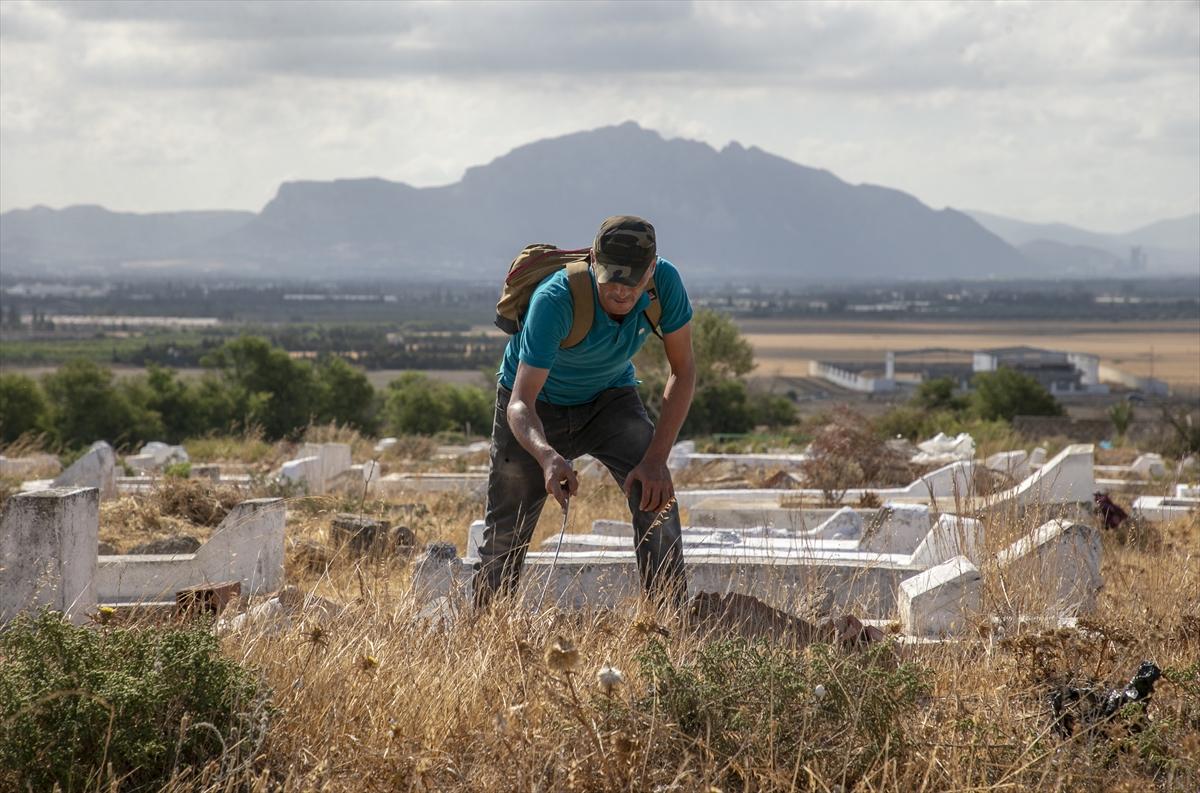 Tunuslu yılan avcısının iş aşkı #2