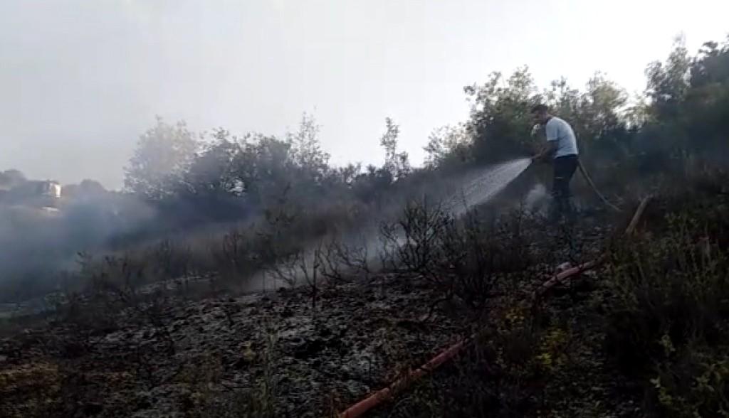 Mersin de piknikçilerin uğrak yerinde yangın çıktı #1