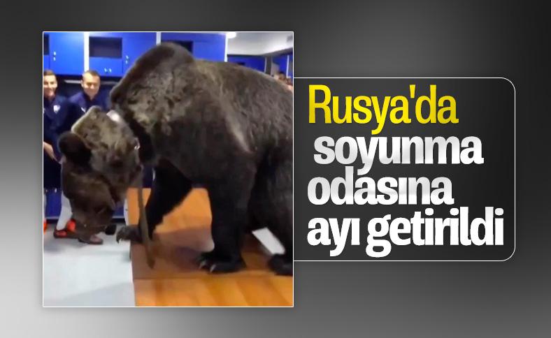 Rusya'da takımın soyunma odasına ayı getirildi