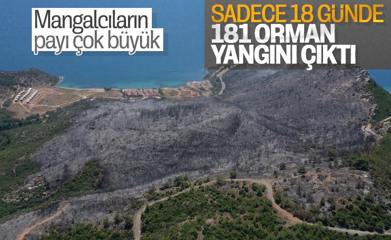 Türkiye'de orman yangınları bitmiyor