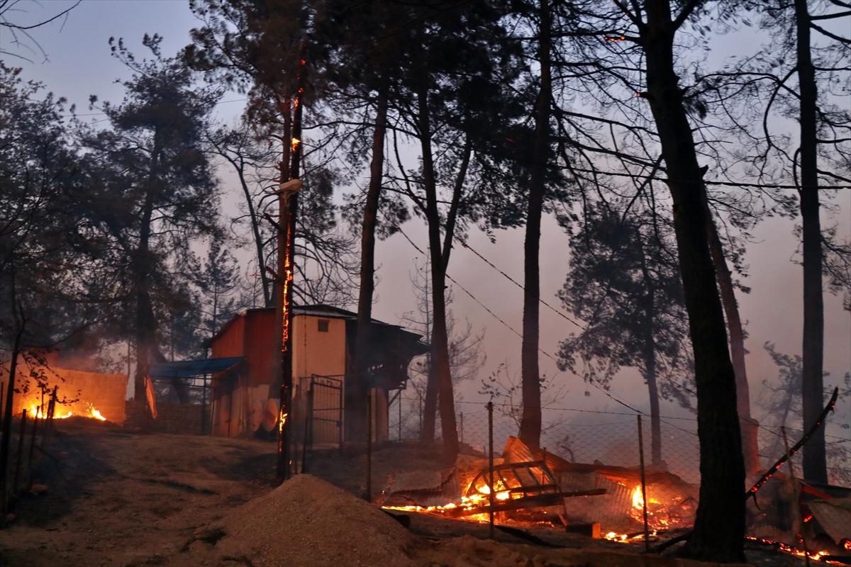 Adana da orman yangını #6