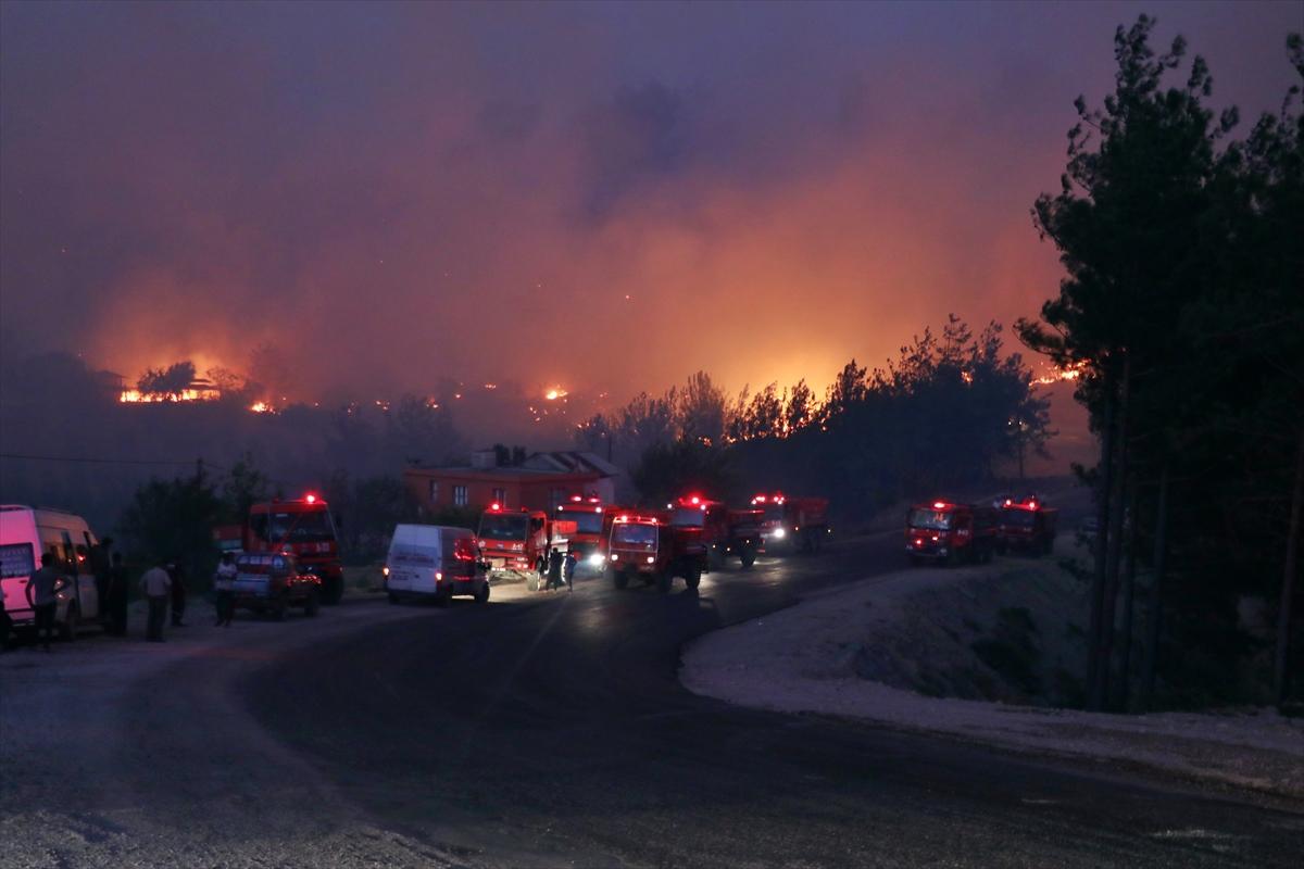 Adana da orman yangını #7