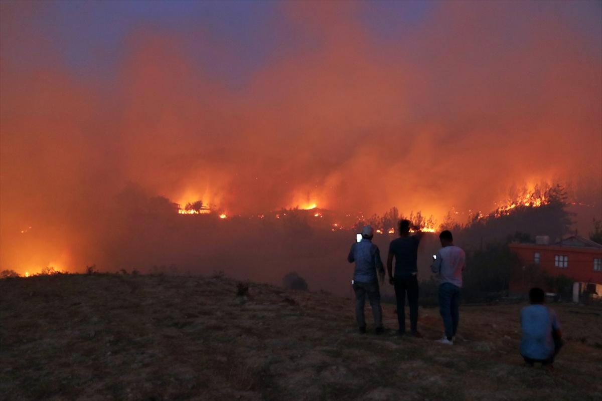 Adana da orman yangını #8