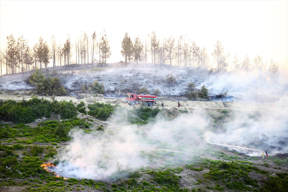 Adana da orman yangını #14