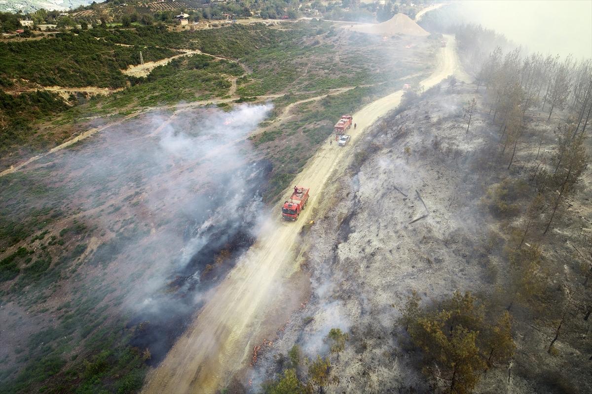 Adana da orman yangını #12
