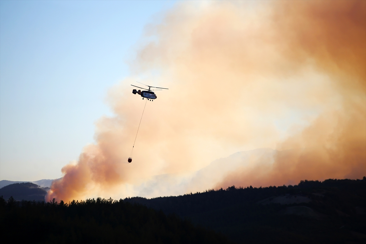Adana da orman yangını #15