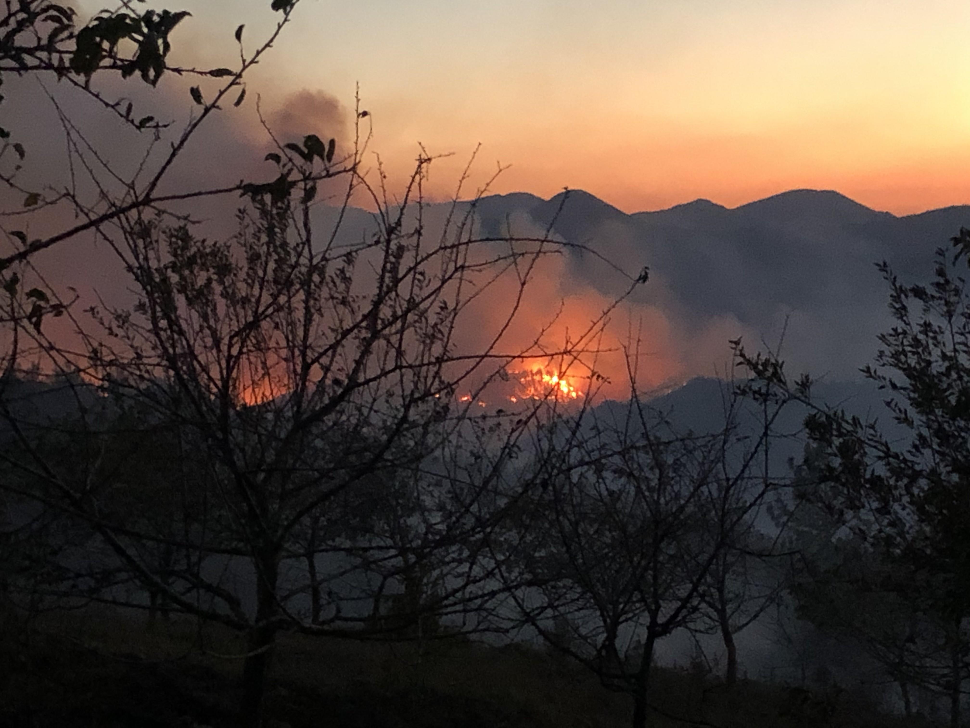 Adana daki yangın kontrol altına alındı #1