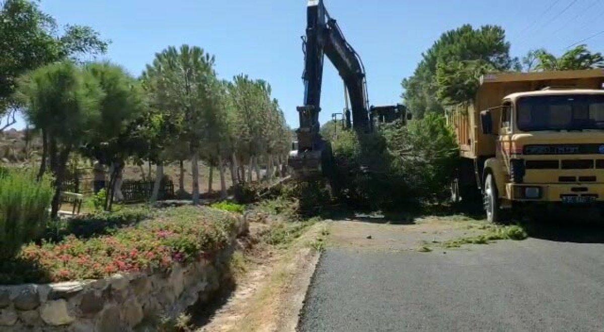 İzmir de CHP li belediyenin ağaç katliamı genç kızı gözyaşlarına boğdu #3