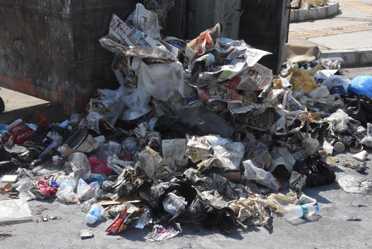 Çöplerin toplanmadığı Çiğli'de esnaf fare kovaladı  #6