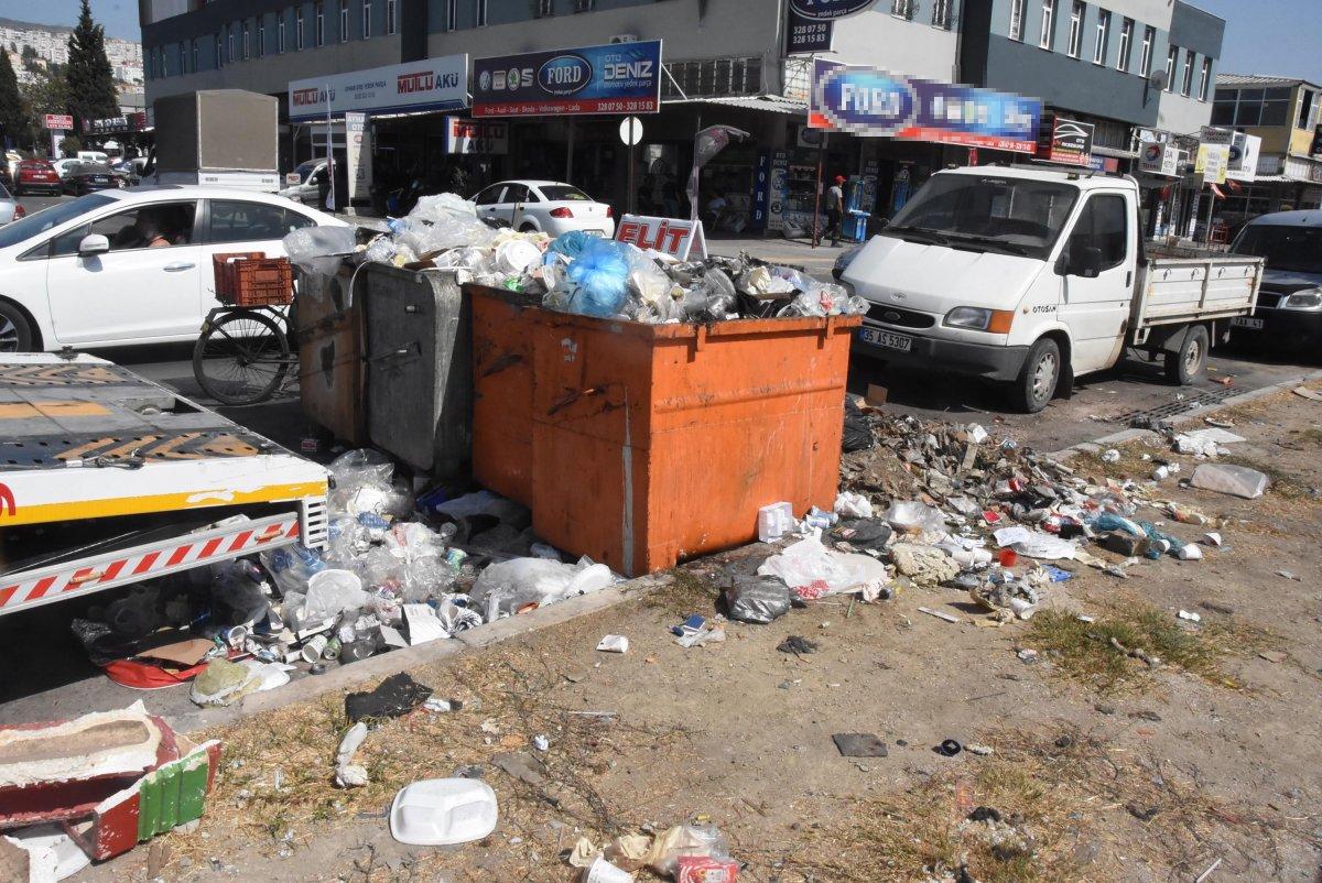 Çöplerin toplanmadığı Çiğli'de esnaf fare kovaladı  #1