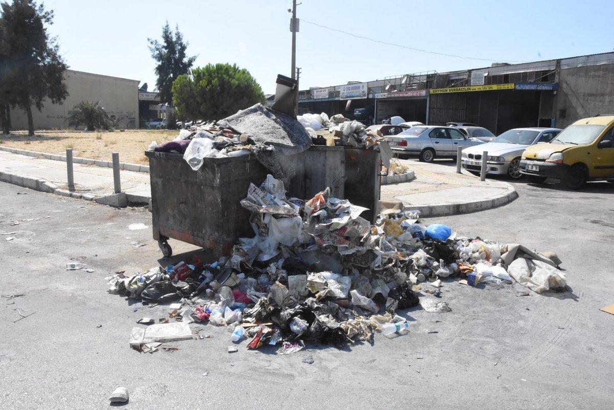 Çöplerin toplanmadığı Çiğli'de esnaf fare kovaladı  #5