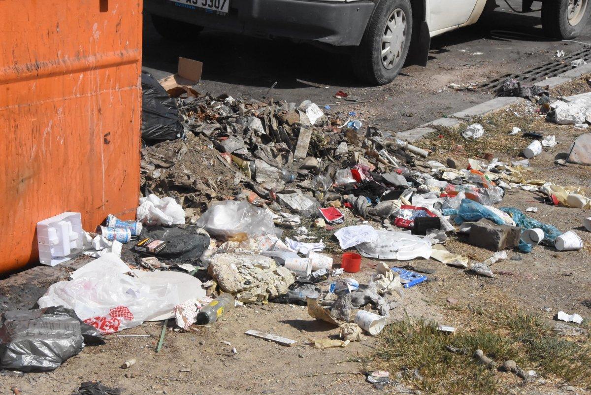 Çöplerin toplanmadığı Çiğli'de esnaf fare kovaladı  #2