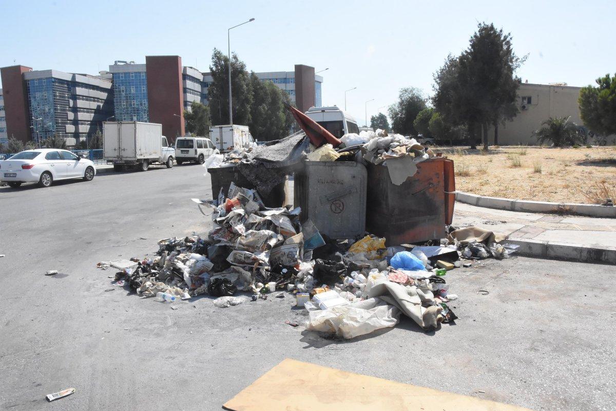 Çöplerin toplanmadığı Çiğli'de esnaf fare kovaladı  #7