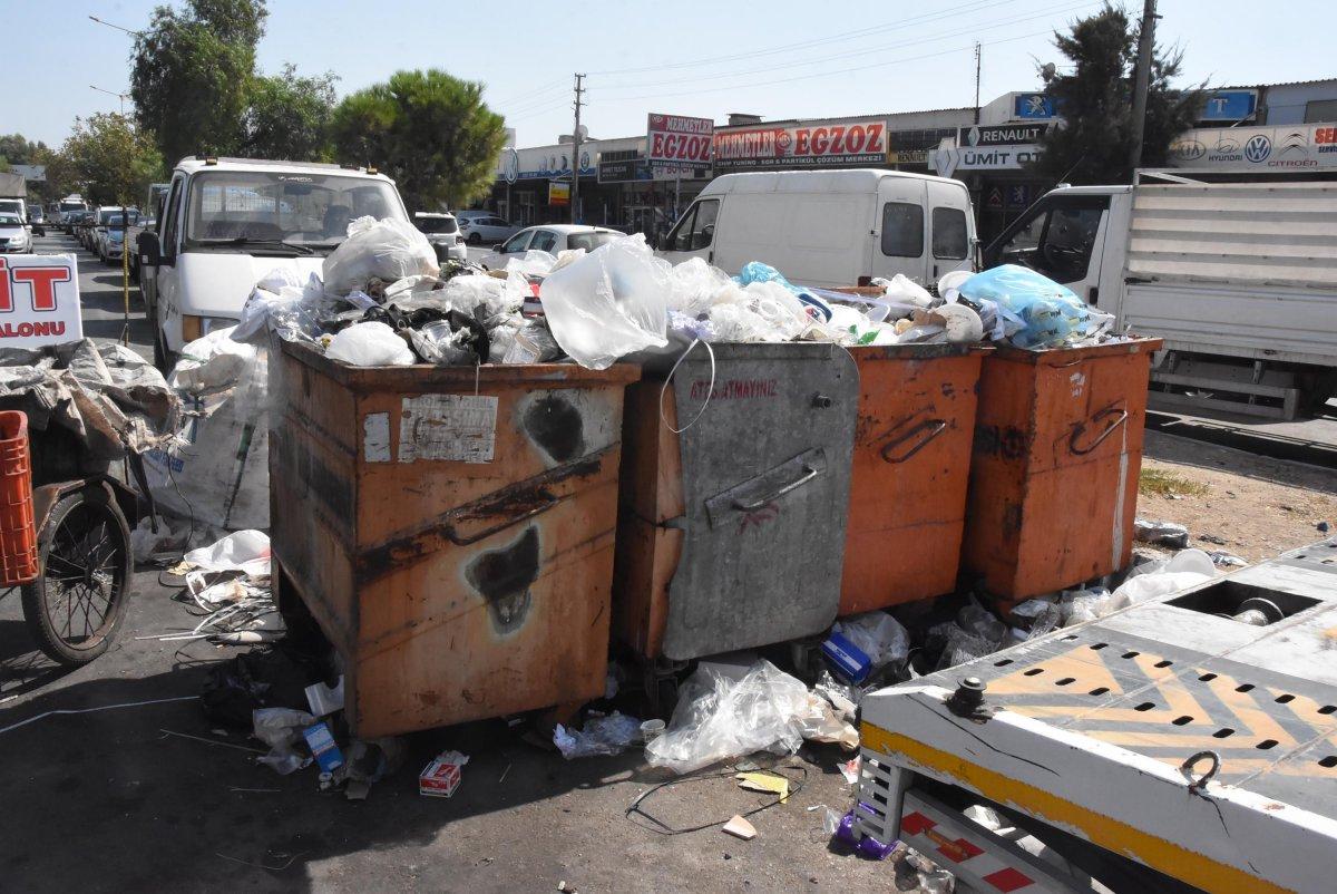 Çöplerin toplanmadığı Çiğli'de esnaf fare kovaladı  #8