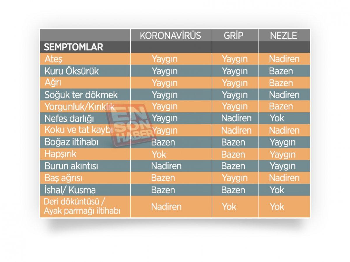 Koronavirüs, grip ve nezlede görülen farklı semptomlar #1