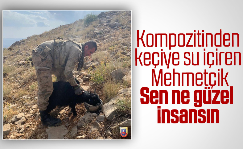 Jandarma Genel Komutanlığı'ndan keçiye su içiren asker paylaşımı