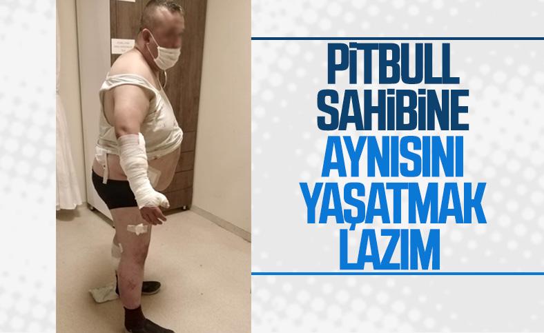 Antalya'da tatil için yerleştiği otelde pitbull saldırısına uğradı