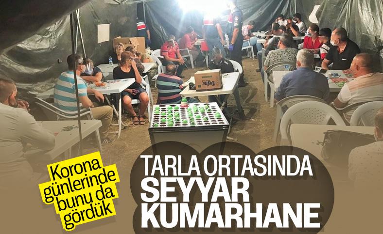 Kırıkkale'de tarlanın ortasına çadır kurup kumar oynadılar