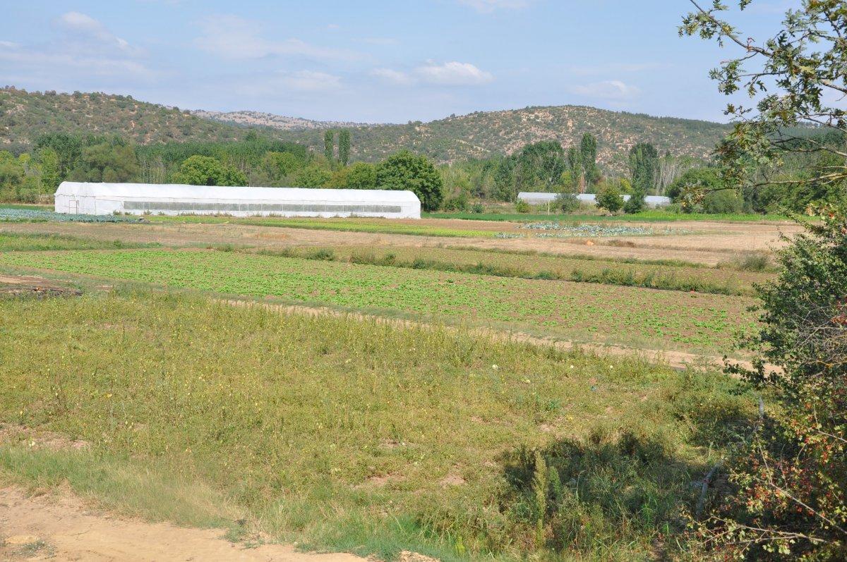 Kütahya da köylüler, tarım arazilerinin sanayileştirilmesini istemiyor #6
