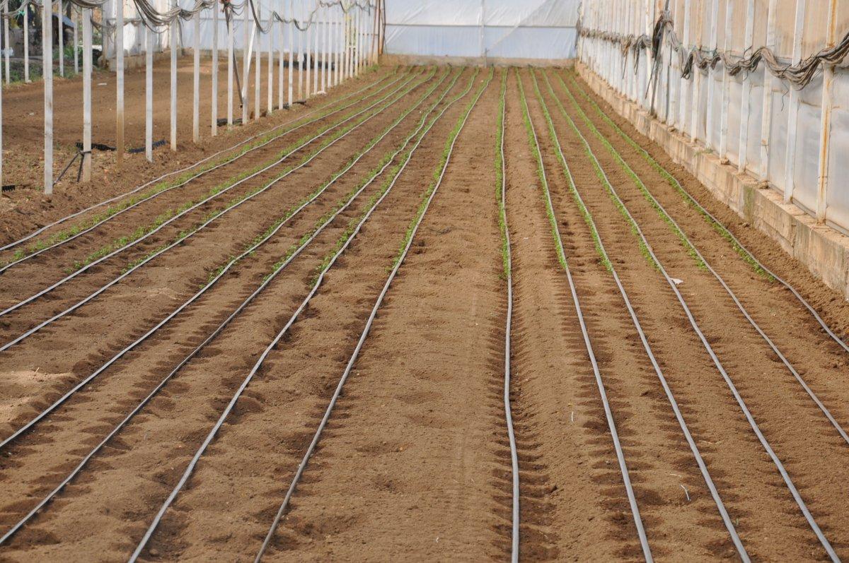 Kütahya da köylüler, tarım arazilerinin sanayileştirilmesini istemiyor #7