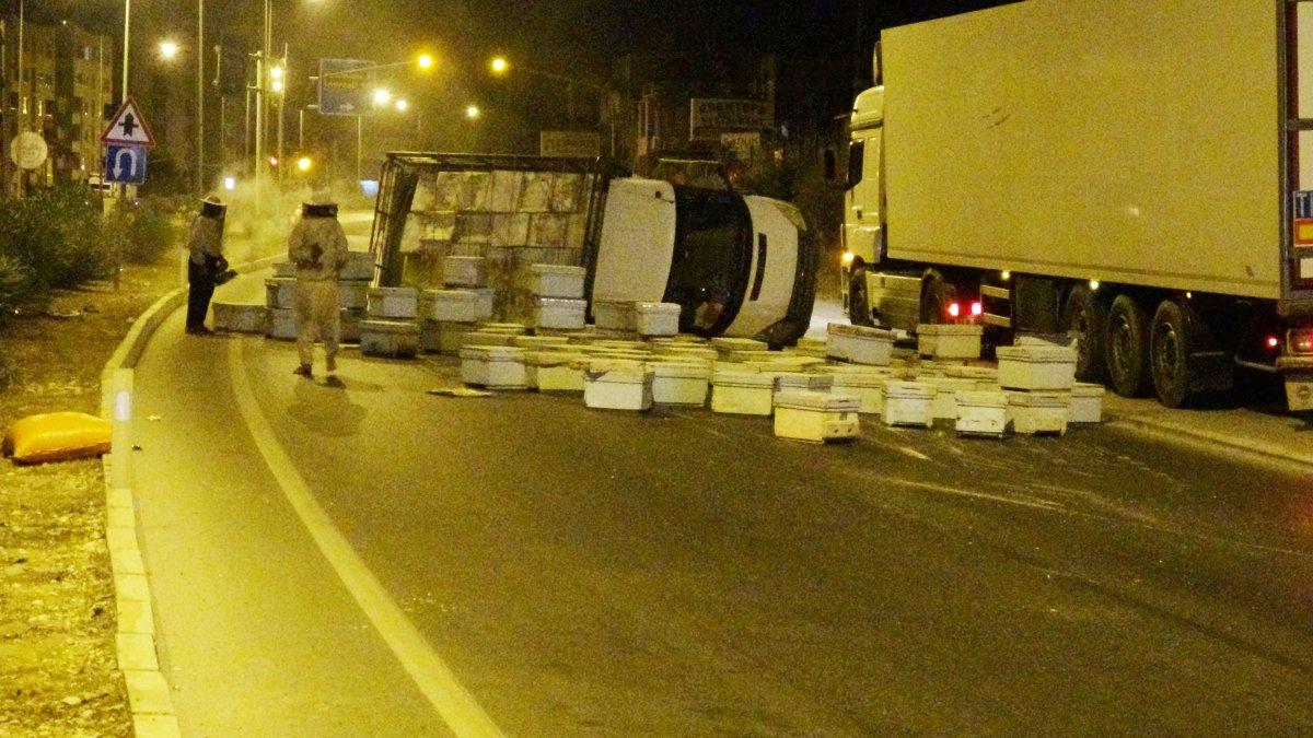 Mersin´de kovanlar ve kızgın arılar yolu trafiğe kapadı #1