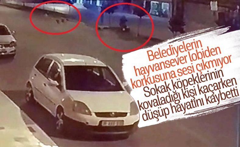 Hatay'da sokak köpeklerinden kaçarken başını refüje çarpıp öldü