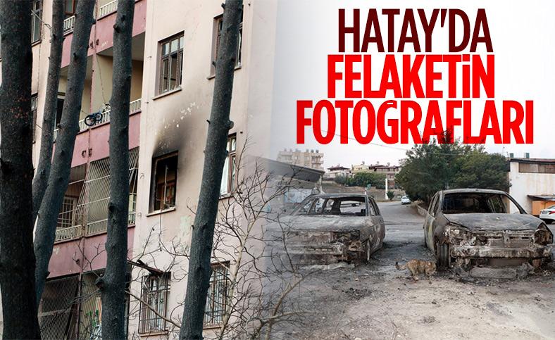 Hatay'da yangın sonrası ortaya çıkan acı manzaralar
