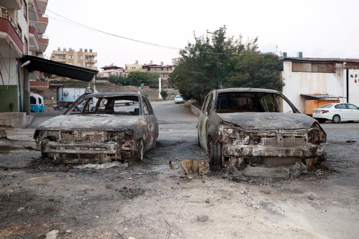 Hatay da yangın sonrası ortaya çıkan acı manzaralar #1