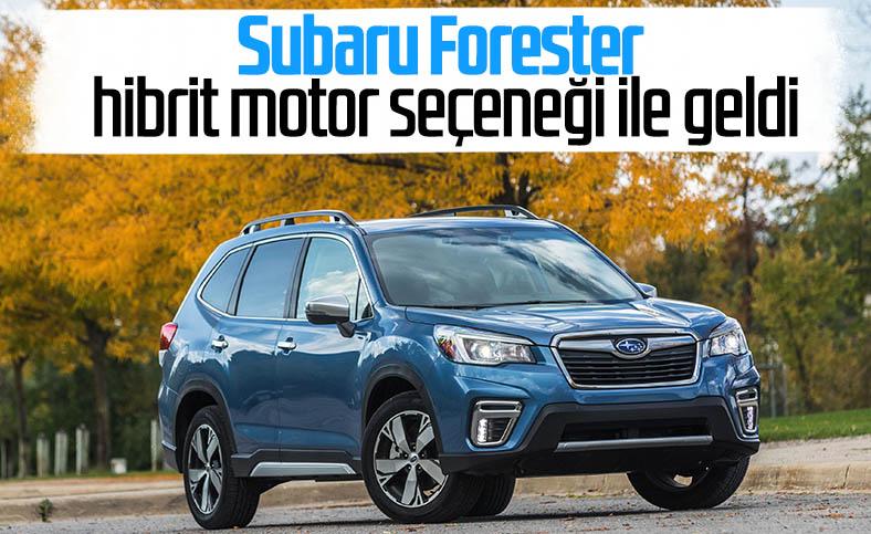 Subaru Forester hibrit motor seçeneği ile Türkiye'de