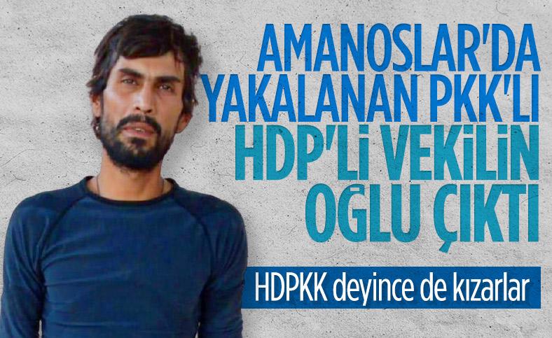 Eski HDP milletvekili Demir Çelik'in terörist oğlu sağ yakalandı