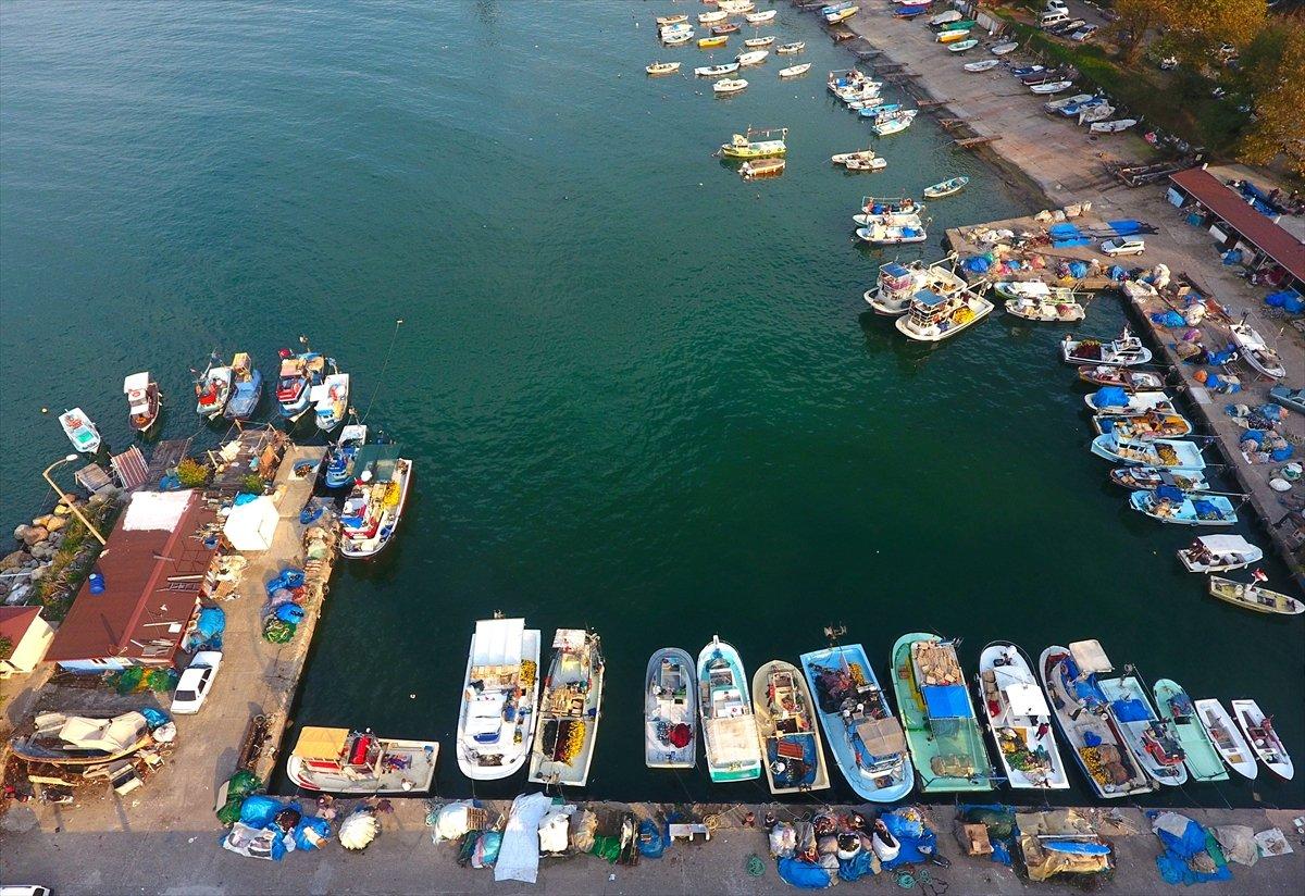 Batı Karadeniz de hamsi sezonu açıldı #1
