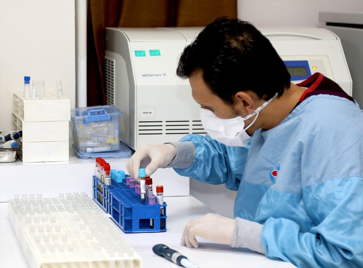 Yerli korona aşısı denemelerine katılan gönüllülerde yan etki görülmedi #3