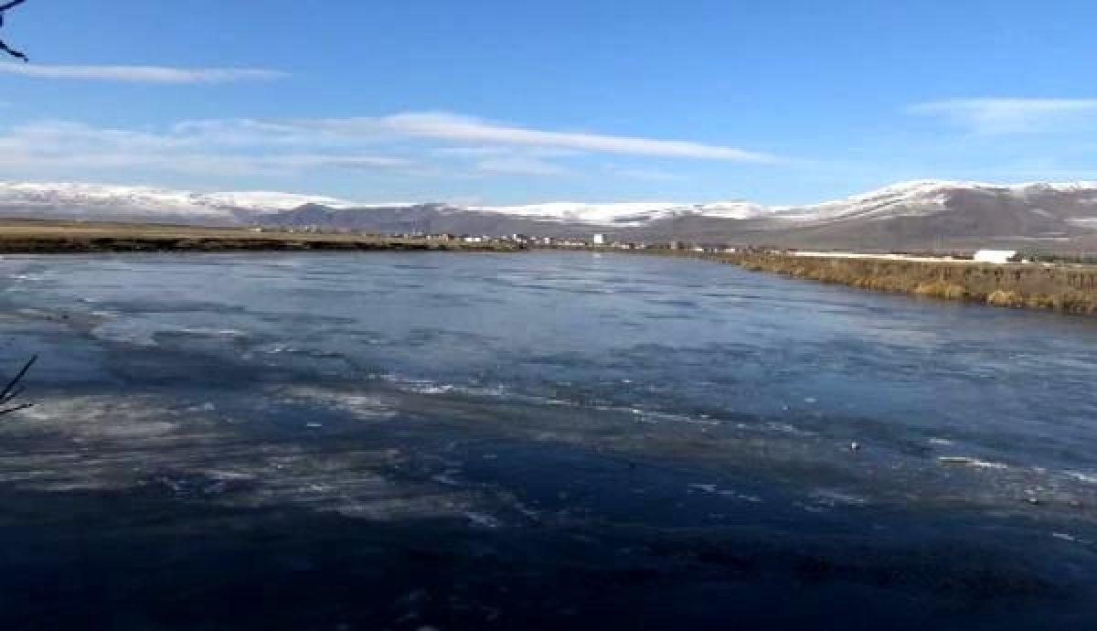 Ardahan da Kura Nehri nin yüzeyi buz tuttu #5