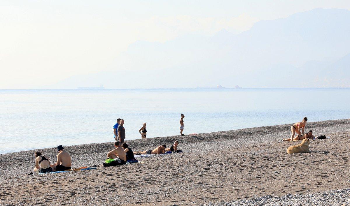 Vaka artışı yüzde 100 Antalya da, sahiller turist ve köpeklere kaldı #3