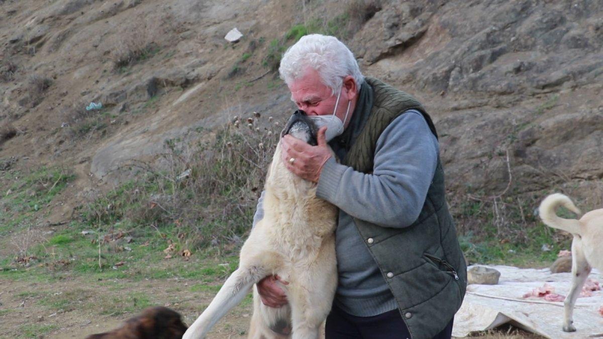 Samsun da sokak hayvanlarını tedavi etmek isteyen Fevzi Uyar, 71 yaşında veteriner oldu #1