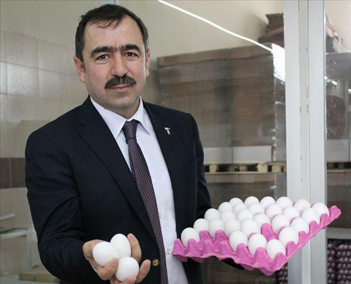 Türkiye Yumurta Üreticileri Birliği: Yumurtacı 17 ay zarar etti #3