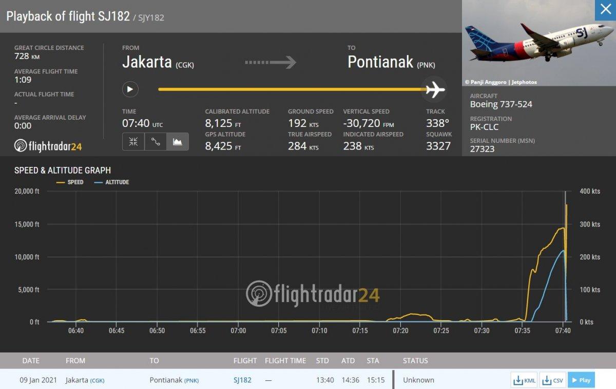 Endonezya da yolcu uçağı denize düştü #4