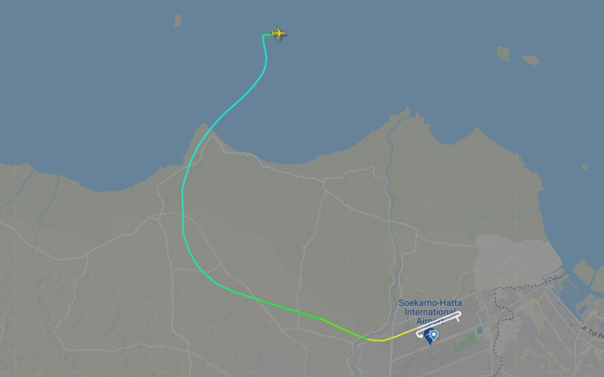 Endonezya da yolcu uçağı denize düştü #3